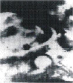 Радиотелеметрические телевизионные системы. Полёт космонавта Ю.Гагарина.